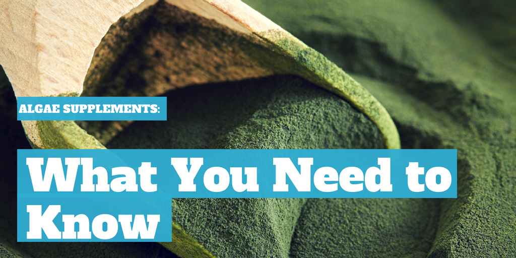 Algae Supplements: What You Need to Know