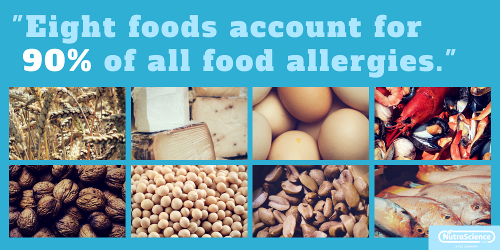 """Eight foods account for 90% of food allergies"" - Images of the the eight major food allergens."