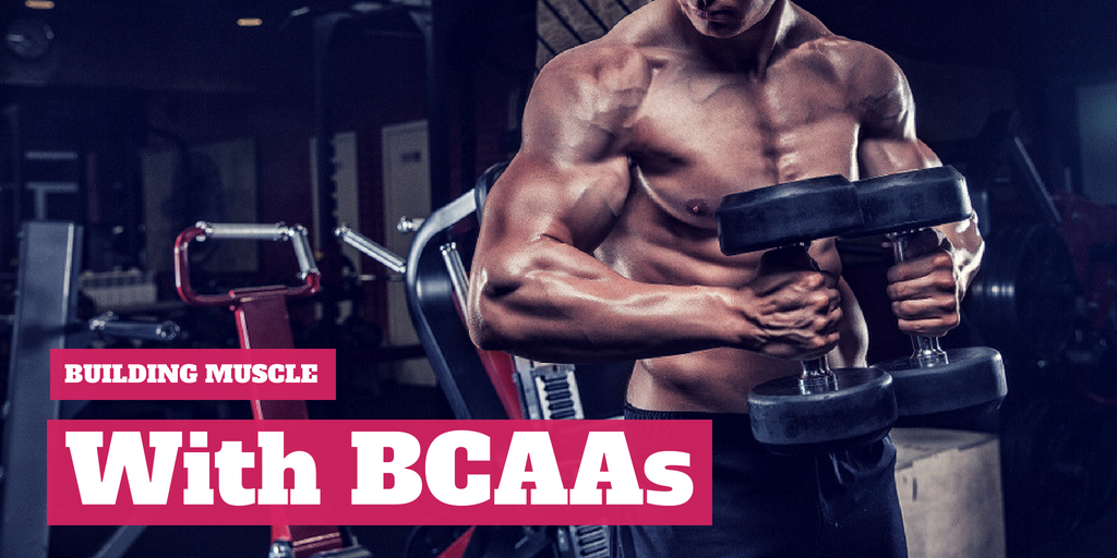 Building Muscle with BCAAs