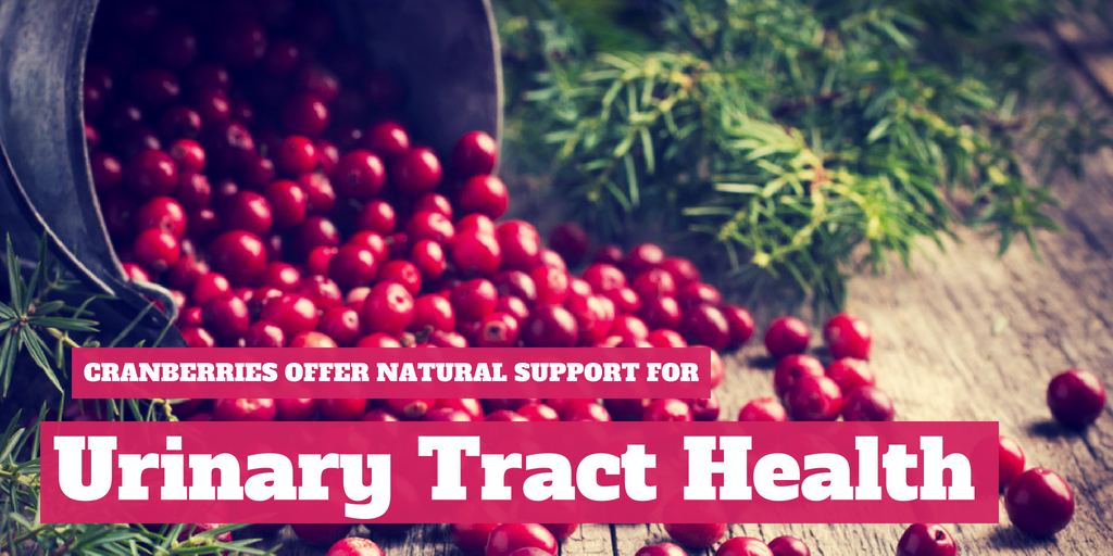Cranberries Offer Natural Support for Urinary Tract Health