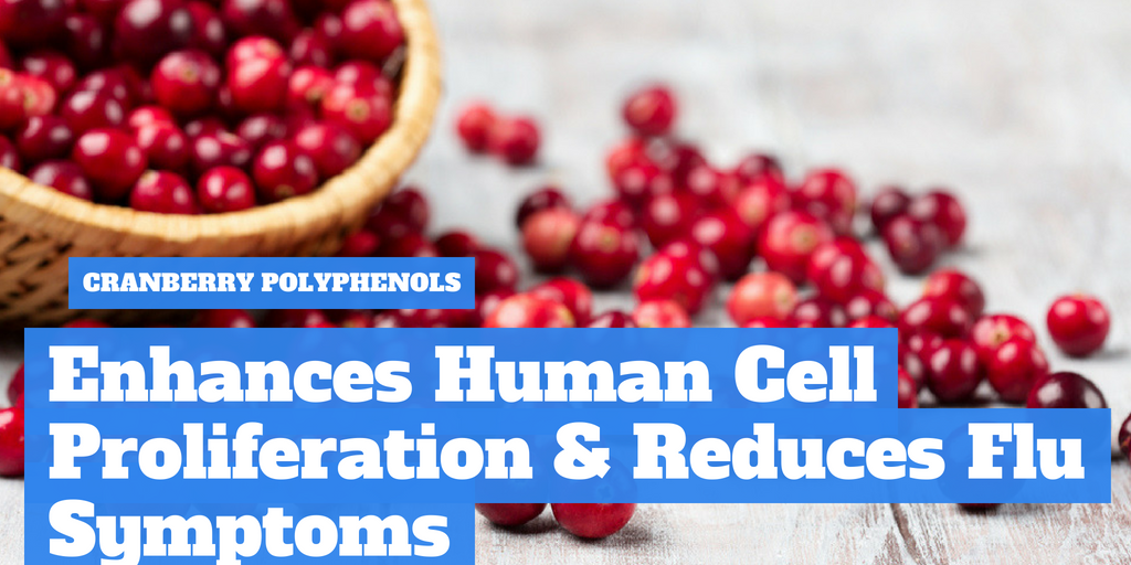 Consumption of Cranberry Polyphenols Enhances Human γδ-T Cell Proliferation and Reduces the Number of Symptoms Associated with Colds and Influenza