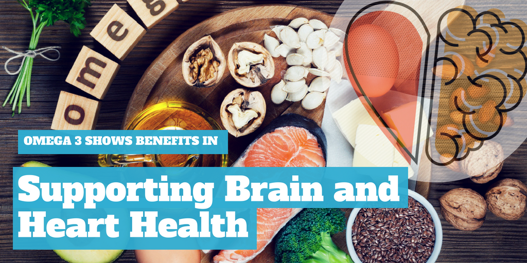 Omega 3 Shows Benefits In Supporting Brain and Heart Health