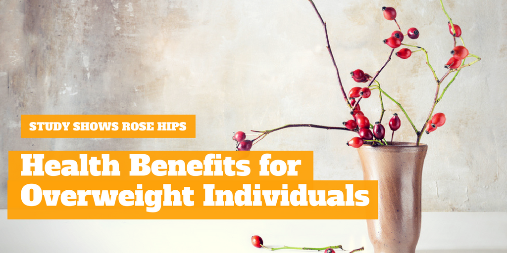 Study Shows Rose Hips Health Benefits for Overweight Individuals