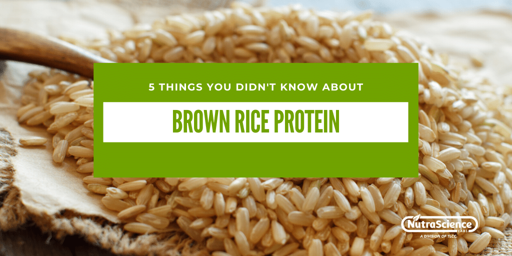 5 Things You Didn't Know About Brown Rice Protein