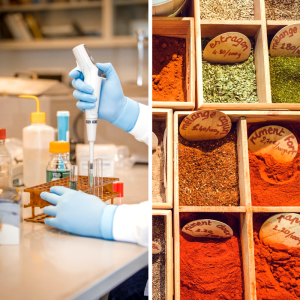 Split Image: Scientist in a lab and spices in a market.