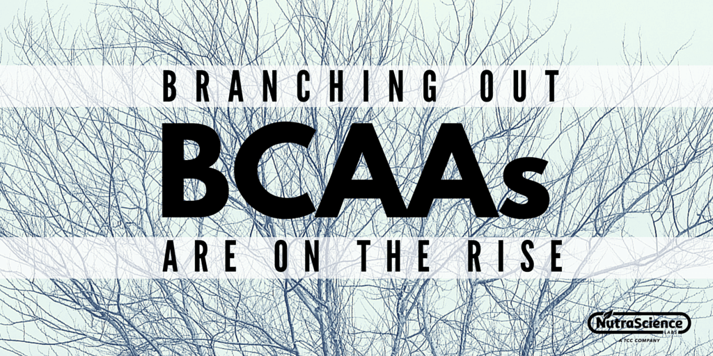 Branching Out - BCAAs are on the Rise