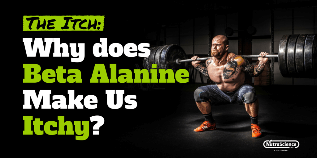 Why does beta alanine make us itchy?