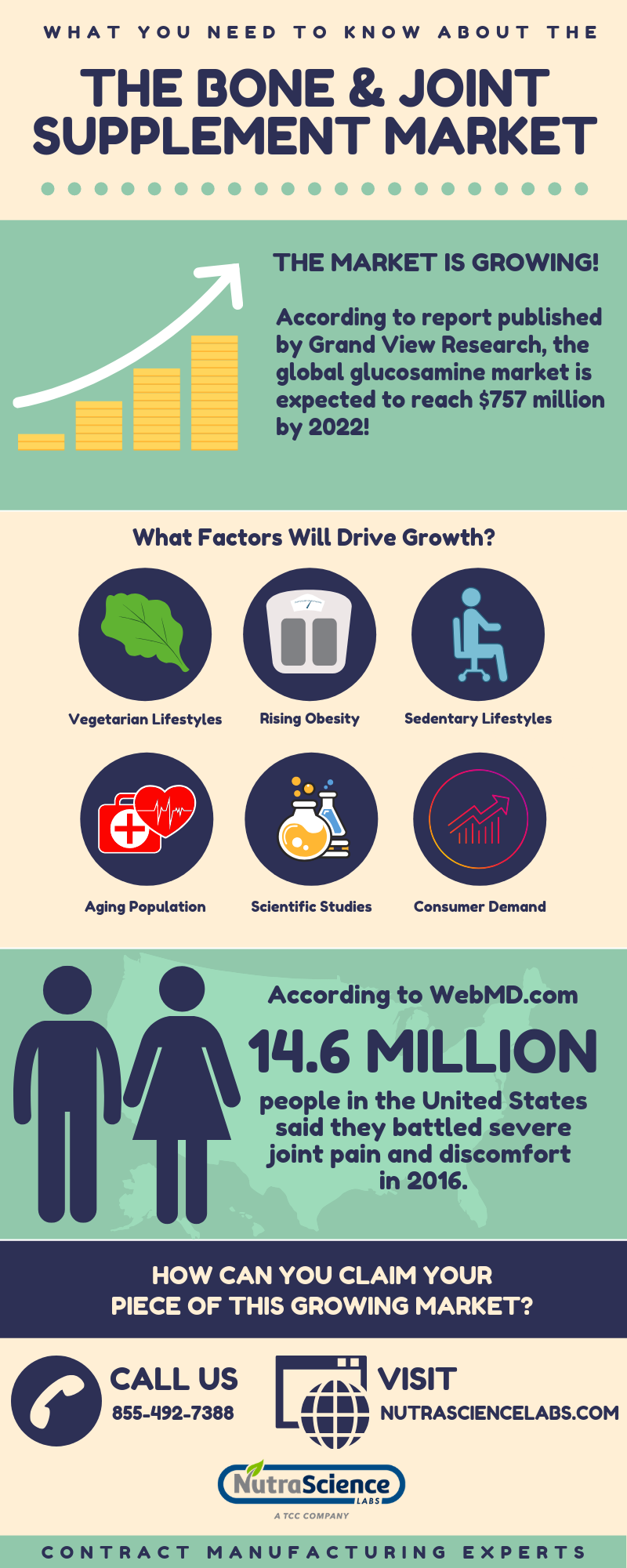 What You Need to Know About the Bone and Joint Supplement Market - Infographic