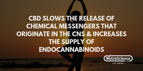 CBD and Muscle Relaxation