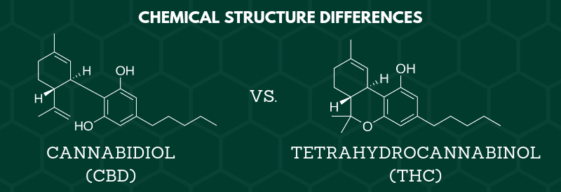 CBD vs. THC Chemical Structure Differences