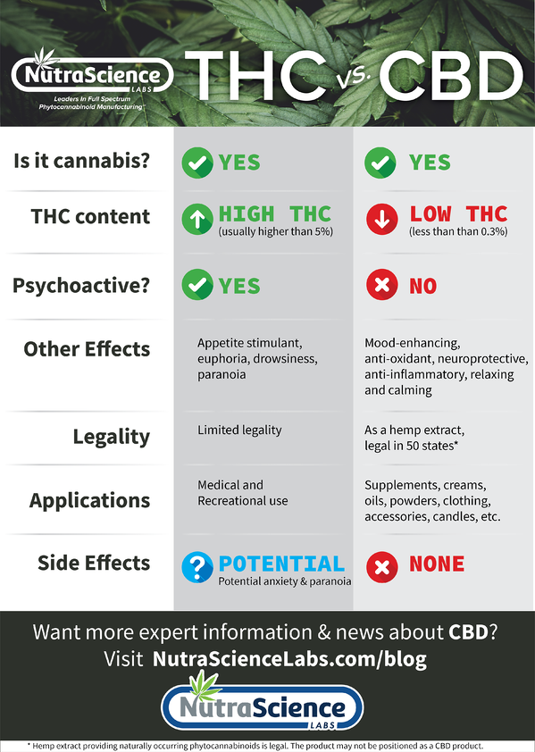 CBD vs. THC - What is the difference between CBD and THC? Infographic