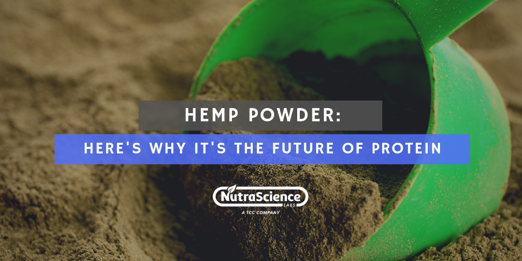Why Hemp Powder is the Future of Protein