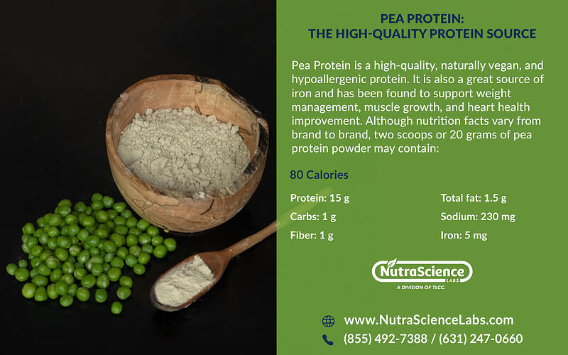 Pea Protein Nutritional Facts Infographic