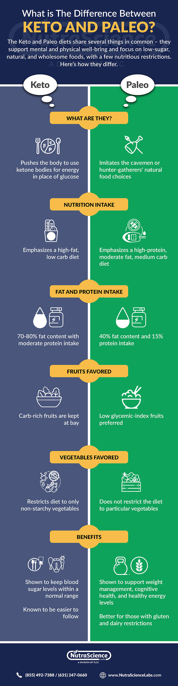 Difference Between Keto and Paleo - Infographic