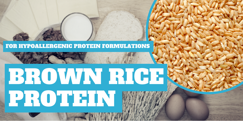 Brown Rice Protein: A Hypoallergenic Formulation Option