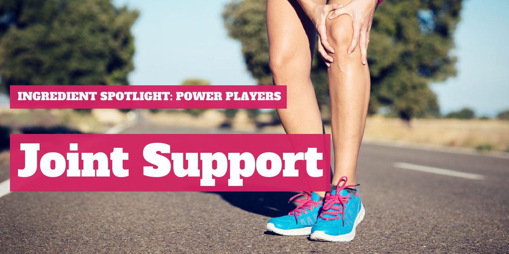 Joint Support Power Players for Sports Nutrition in 2018