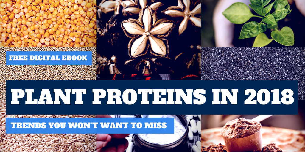 PLANT PROTEINS IN 2018: Trends You Won't Want to Miss [FREE eBOOK]