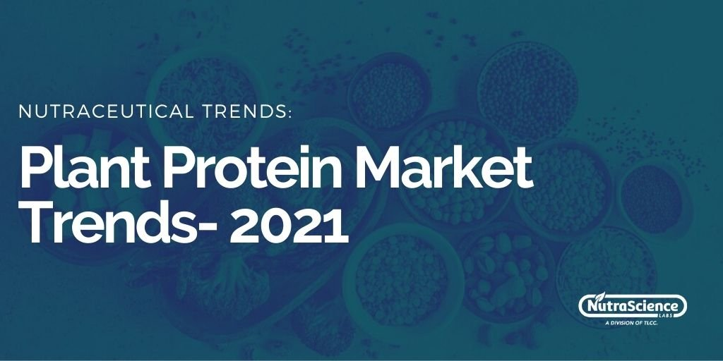 Plant Protein Market Trends For 2021