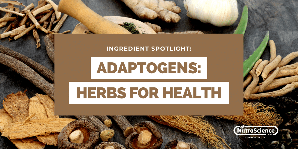 Adaptogens - Herbs for Health