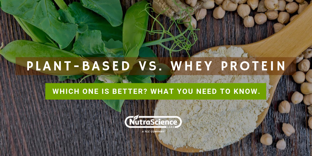 Plant-Based Protein vs. Whey Protein: Which One Is Better?