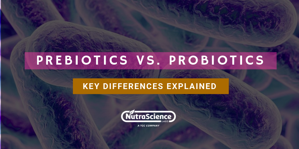 Prebiotics vs. Probiotics: Key Differences Explained